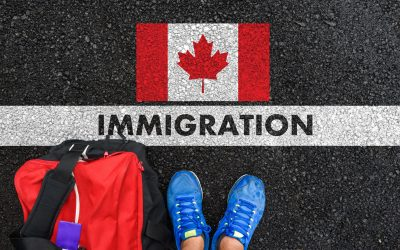 New Information about Immigration Fraud
