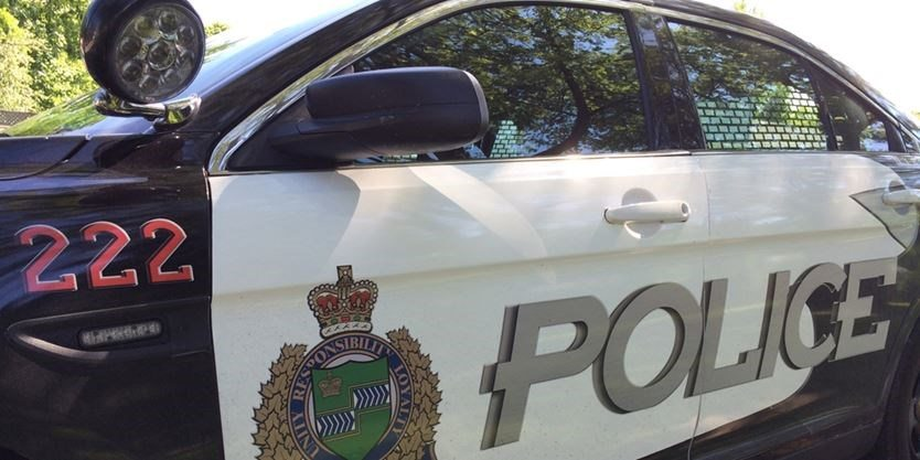 A Richmond Hill man has been charged with multiple counts of fraud after investigation by Niagara Regional Police