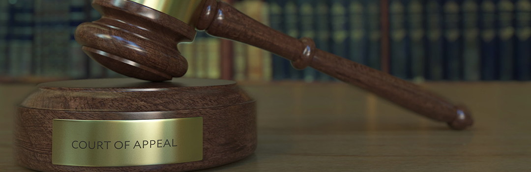 Appeal court holds up sentence against disbarred lawyer for business loan frauds